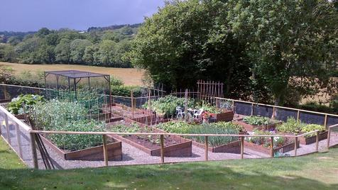 Steeply sloping vegetable garden